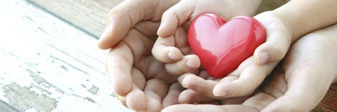 child's hand ontop of an adult hand holding a heart
